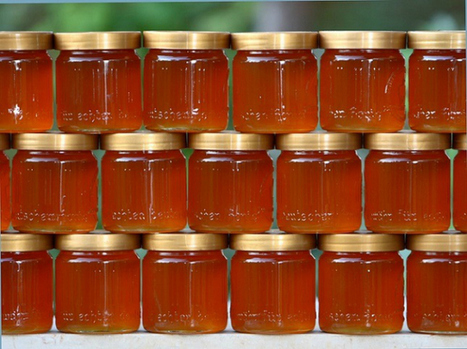 Himalayas Are Home To The World's Largest Bees Which Produce A Potent Variety Of Honey | Health from the Hive | Scoop.it