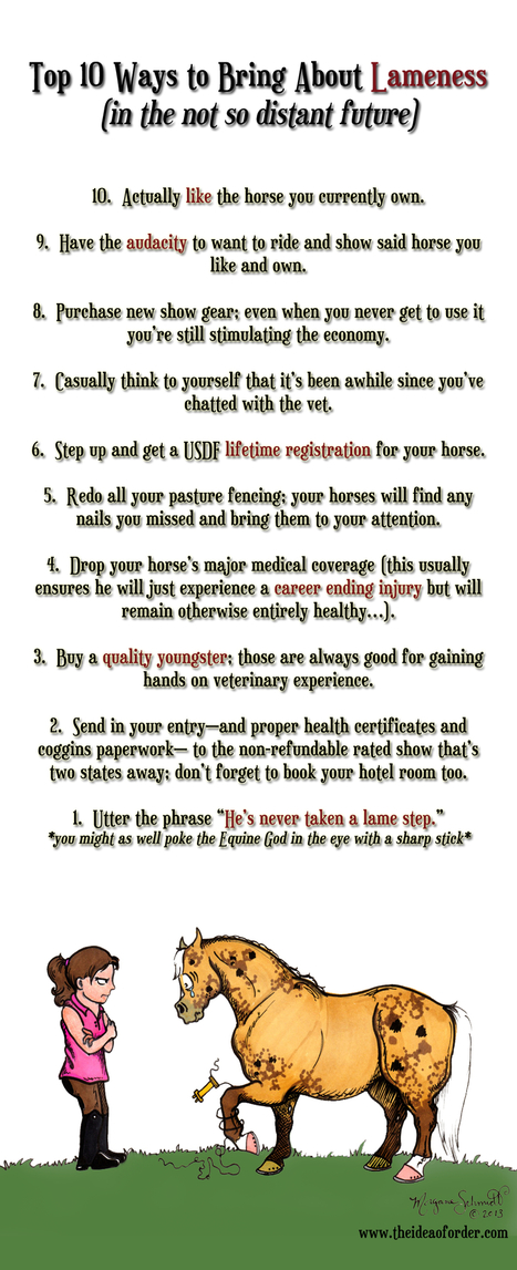 Top 10 ways to bring about lameness | From the Equine Blogosphere | Scoop.it