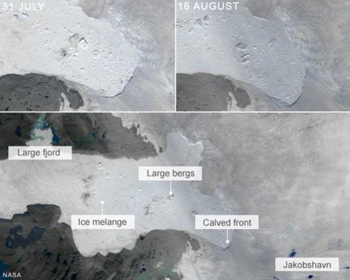 Greenland's Jakobshavn Glacier sheds big ice chunk - BBC News | Océan et climat, un équilibre nécessaire | Scoop.it