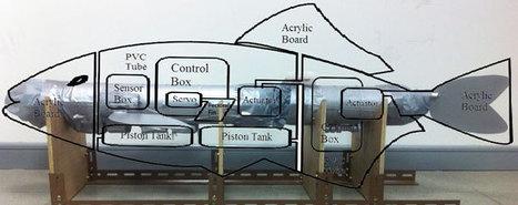 Meet Robot Carp, a robot fish with autonomous 3-D movement | 3rd Industrial Revolution | Scoop.it