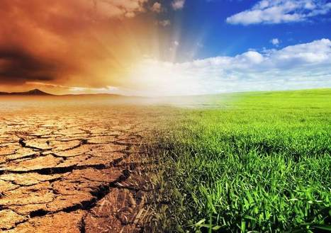6 Ways Climate Change May Affect Your Health | Safe Bee (Blog) | CALS in the News | Scoop.it