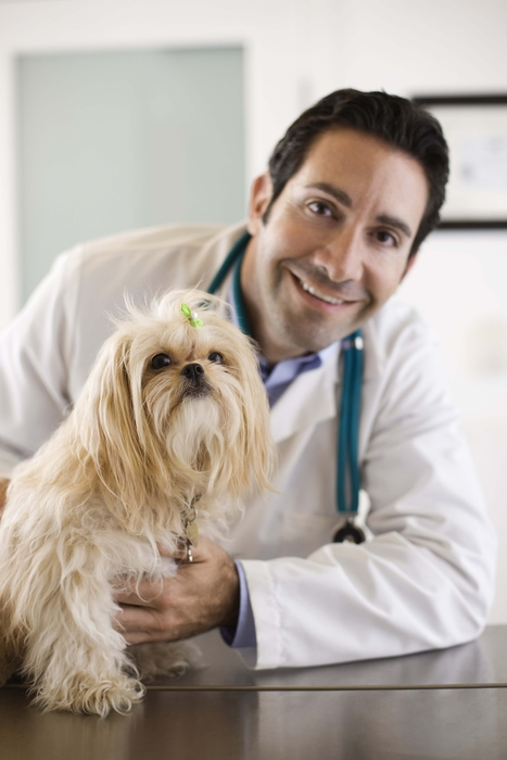 Why to Choose the Best Veterinary Hospital for Your Pet? | Veterinarian Hospital | Scoop.it