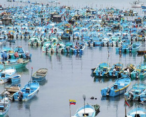 EQUADOR: National register of fishing vessels established | OUR OCEANS NEED US | Scoop.it