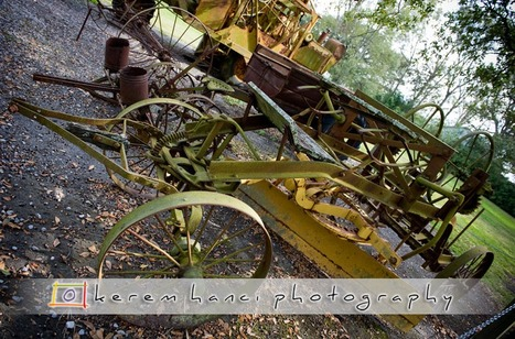 Kerem Hanci photos of Oak Alley | Oak Alley Plantation: Things to see! | Scoop.it