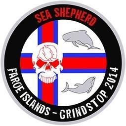 Sea Shepherd UK :: Sea Shepherd announces Operation GrindStop 2014 | Marine life | Scoop.it
