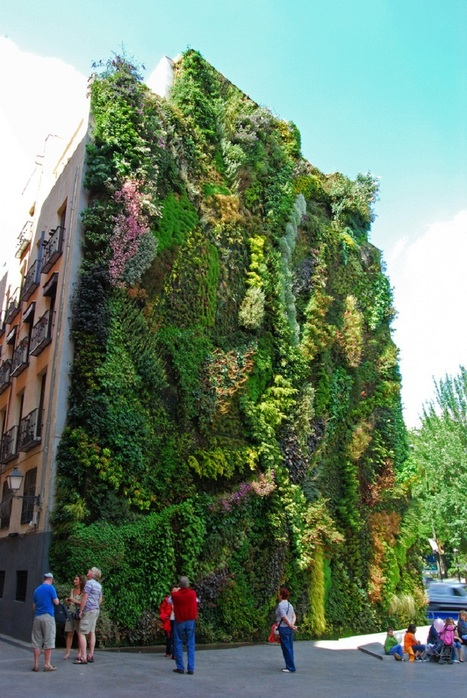 Vertical Garden – By Patrick Blanc in Madrid, Spain | The growth of the Online Gambling industry and the aspects of the Social Gaming | Scoop.it