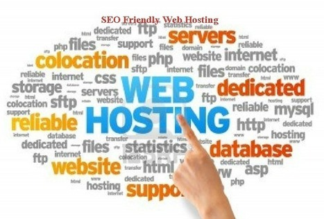 How SEO Friendly Web Hosting Work for Sales - WinFlyWeb   SEO   Scoop.it