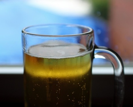 Merely a Taste of Beer Can Trigger a Rush of Chemical Pleasure in the Brain | PEI AUDIT | Scoop.it