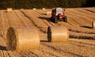 Farming needs Adam Smith's invisible hand, not finance capitalism   Local Economy in Action   Scoop.it
