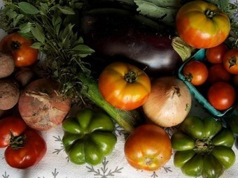 In defense of organic agriculture : TreeHugger | science for the public | Scoop.it