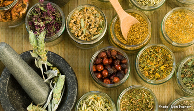 Green Medicine: Alternatives to the Standard Modern Cures - Living Green ... - Living Green Magazine | ecoiko shopping | Scoop.it