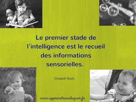 Les fonctions cognitives, cest quoi ? | PSYCHOMOTRICITÉ | Scoop.it