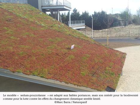 Agence régionale pour la nature et la biodiversité en Ile-de-France - Végétalisation des toitures: parure verte ou écosystèmeurbain?   Résilience climatique des villes   Scoop.it