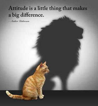 Attitude | Self Improvement | Scoop.it
