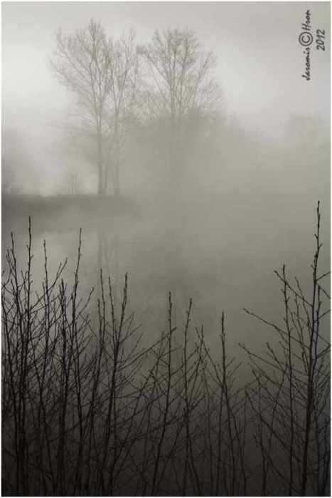 In the mist: Photography by Jaromir Hron #art #photograpy #nature #mist #blackandwhite #landscapes | Luby Art | Scoop.it