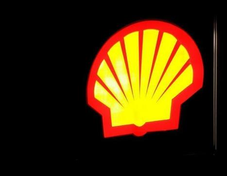 SURPRISE !!! Shell finalement autorisé à forer en Guyane, au détriment de la ministre de l'Ecologie | SandyPims | Scoop.it