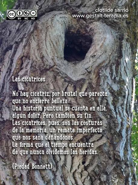 Las cicatrices... | Frases - Quotes - Reflexiones | Scoop.it
