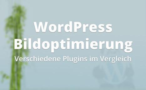 WordPress Bildoptimierung - Verschiedene Plugins im Vergleich | webDesign Ideen | Scoop.it