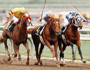 West: Breeders' Cup nostalgia | Horse Racing News | Scoop.it