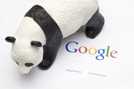 Comprendre Panda, l'algorithme Google | Marketing Web et Mobile | Scoop.it