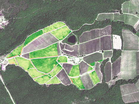 Wine improves with age but also with very high-resolution satellite imagery | Drone (UAV) News | Scoop.it