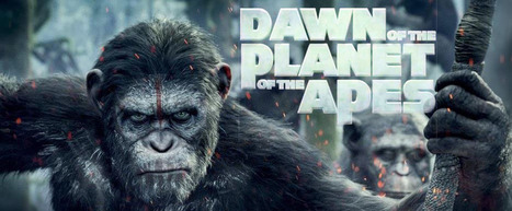 Dawn of the Planet of the Apes 2014 Movie Trailer, Release Date | Hollywood Movies, Videos, Photos, Events | Scoop.it