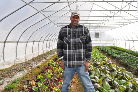 Urban Farmers Say It's Time They Got Their Own Research Farms | STEM Connections | Scoop.it