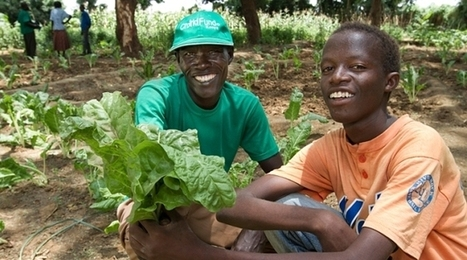 Making a lasting difference in the Horn of Africa | SEASACMUN NIST: Environment | Scoop.it