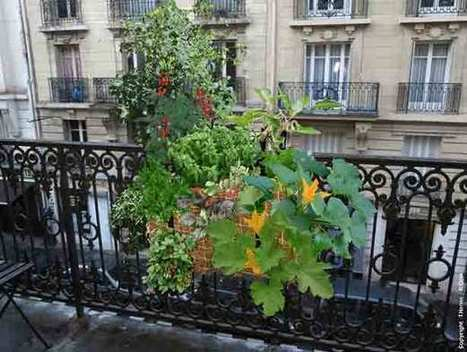 French Straw Bale Garden Grows Crops and Flowers On Urban Balcony | Urban Gardens | home decor for small apartments - living well, living compactly | Scoop.it