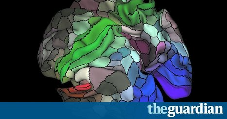 Updated Map of the Human Brain Hailed as a Scientific Tour de Force // The Guardian | Educational Psychology & Technology | Scoop.it
