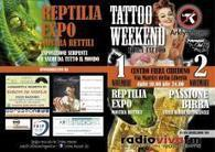 Tattoo weekend Chiuduno|Tre fiere in una:|tatuaggi, birra e rettili | Bergamonews - Quotidiano online di Bergamo e Provincia | Tattoo Tattoo Convention and more | Scoop.it