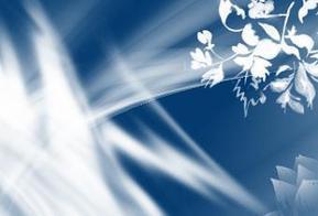 50 Tutorial Photoshop per Principianti - Paperblog | SocialNONmente | Scoop.it