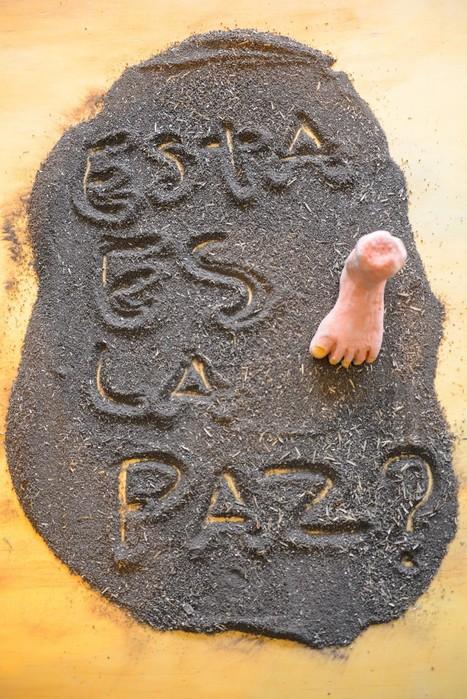 Seeking peace in Medellín's house of memory   memoir writing   Scoop.it