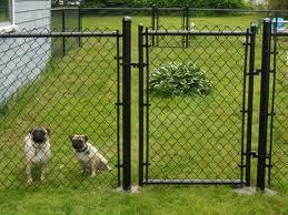 What Pet Owners Like about Small Dog Fences? | Dog Fence | Scoop.it