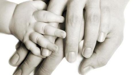 Siete niños esperan un trasplante multivisceral | AVATCOR | Scoop.it