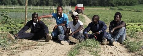 [fre] Projet d'aide aux réfugiés: exemple d'intégration réussie grâce à ... - cafebabel.fr | Association solidaire, aide alimentaire , aide aux personnes en difficulté | Scoop.it