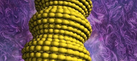 Nanotechnology research leads to super-elastic conducting fibers | Amazing Science | Scoop.it