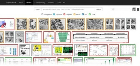 VizioMetrix, un buscador visual de literatura científica | Recull diari | Scoop.it