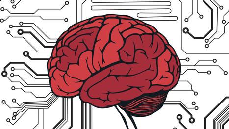 Write my human brain vs computer essay
