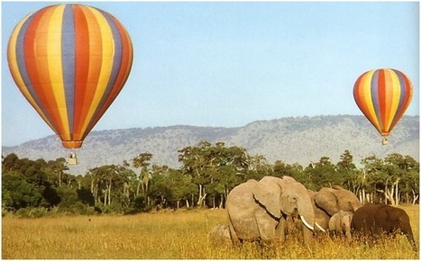 Masai Mara Hot Air Balloon festival to support anti poaching | Wildlife Trafficking: Who Does it? Allows it? | Scoop.it