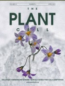 "New PPH publication ""Epigenetic Basis of Morphological Variation and Phenotypic Plasticity in Arabidopsis thaliana"" in Plant Cell 