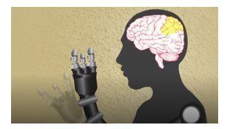 TÉTRAPLÉGIE: Bientôt des robots qui fonctionnent à l'intuition? | Crakks | Scoop.it