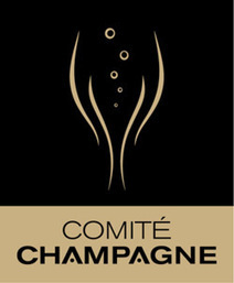 Oenotourisme en Champagne | Le Vin en Grand - Vivez en Grand ! www.vinengrand.com | Scoop.it