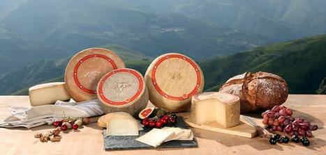 Coup de booster pour l'AOP Ossau-Iraty | The Voice of Cheese | Scoop.it