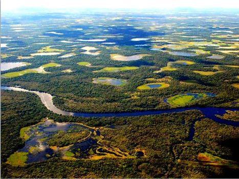 [Altermonde-sans-frontières] Comment parler à ceux qui se foutent du Pantanal ? | Merveilles - Marvels | Scoop.it