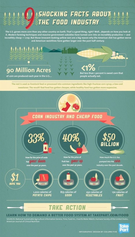 "Health - 9 Unknown & Shocking Facts about Food Industry | Infographics | ""Environmental, Climate, Global warming, Oil, Trash, recycling, Green, Energy"" 