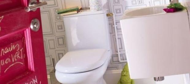 10 idées à oublier pour la déco des WC | La Revue de Technitoit | Scoop.it