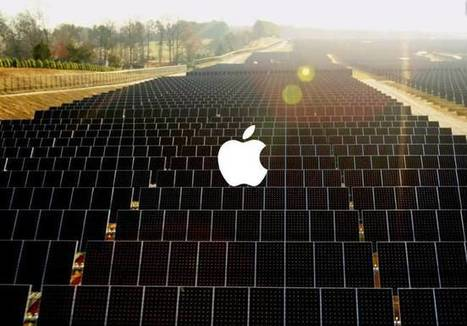 Apple buys a forest the size of San Francisco for conservation, will build 2 new solar farms | Greening the Media Ecosystem | Scoop.it