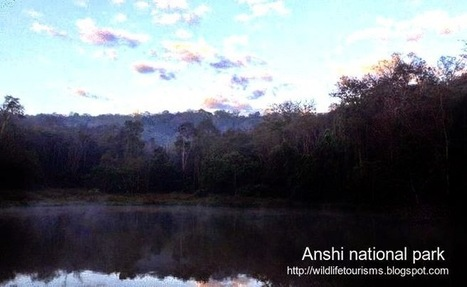 Anshi national park and Tiger reserve in karnataka ~ Wildlife travel and tourisms   computer hardware and networking course   Scoop.it