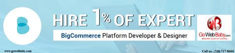 Create online webstore on BigCommerce Platform by Expert Ecommerce Developer & Designer | Gowebbaby's Prestigious Web Design | Scoop.it